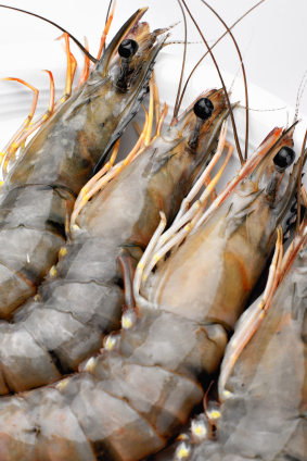 how to cook fresh prawns in shells