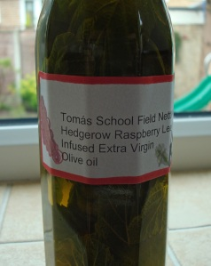 Tomas School Field Nettles