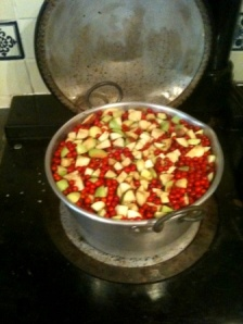 rowan berries and apples in the pan