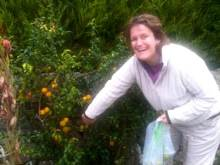 Steph foraging in Mrs N's garden!