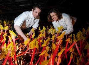 Paul and Steph amid a sea of amazing rhubarb