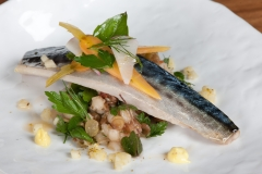 Whitby Seafish Mackerel, Forager's Salad, Pickled Baby Vegetables